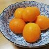 【1029】果物・蜂蜜・黒糖の解禁とEAA常飲中止