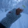 冬山で使用するなら、やっぱりウールのグローブ