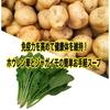 健康体を維持するための食事。免疫力向上と疲労回復をサポートする、「ホウレン草とジャガイモの簡単お手軽スープ」