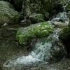 ある山の、新緑と水の風景