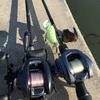 6/3 朝だけ短時間淀川水系釣行~ほぼトップ縛り?、いい武器2つも見つかった~