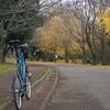 青葉の森公園 〜江戸川、花見川