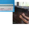 繁殖牝馬にワクチン接種しましたか?(生産)