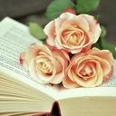 淡々と読書する日々