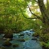 東北観光3日目◎星野リゾート・奥入瀬渓流・十和田湖・RIBツアーで満足旅!10年ぶりの家族旅行に行ってきた。