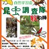 秋の昆虫調査隊じゃ