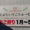 愛知県豊田市でいちご狩りをするなら、とよたいちごふぁーむ へ行ってみよう