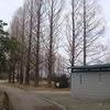 #030 散歩(6)若宮公園