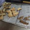 幸運な病のレシピ( 1263 )朝 :カマスの天ぷら、鳥の天ぷら、おでん風煮しめ、味噌汁(キャベツとタケノコの穂先)