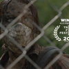 2016年度トライベッカ映画祭オーディエンス賞受賞のゾンビ映画、ロッド・ブラックハースト監督の『HERE ALONE』。