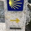 【Inglés】5. Sigüeiro - Santiago de Compostela