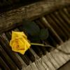 制作メモ;<ピアノ曲>不定調的な即興表現★★★★