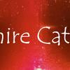 サファイアキャッツアイ:Sapphire Cat's-eye
