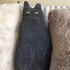 猫好きさん必見!Noritakeの猫クッション!