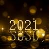 ポケトレ2020年の収支
