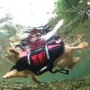 8月1日(日)京都美山で川遊び♪ カメラマンに水中写真を撮ってもらおう!