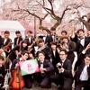 #榴岡公園桜まつり