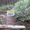 5カ月ぶりにかみさんと歩いた高尾山から景信山②  2021/05/09