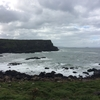 北アイルランド Ginant's Causeway に行ってきました!