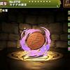 【パズドラ】カナヲの銅貨の入手方法や使い道情報!