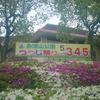 (地域イベントその1)永源山公園つつじ祭り