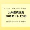 【2021ふるさと納税】鹿児島県いちき串木野市「九州産焼鳥セット50本」