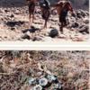 ネパ-ルの樹木と花 第44回目
