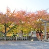 六孫王神社の紅葉。見頃や現在の状況。