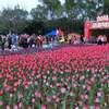 春節期間、中国観光収入4750億元