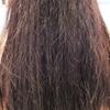 髪が受ける影響とは?