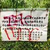 合池(大阪府岸和田)