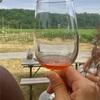 【カナダ】トロントからナイアガラの滝への日帰りツアーへ参加。ナイアガラ・オン・ザ・レイクという街並みと、ワイナリーでアイスワインを味わう♡