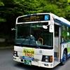 中国バス 296
