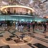シンガポール街歩き#256(見送りにチャンギ空港まで)