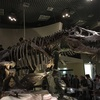 国立科学博物館に行ってきた