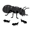「地球防衛軍6」と「三体Ⅱ 黒暗森林」