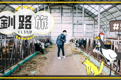 【釧路旅行記】渡辺体験牧場で乳牛と触れ合ってきたレポート[その5]