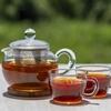 紅茶で免疫力アップ&感染症予防? 紅茶大国インドとイギリスでコロナ感染爆発の不思議?