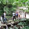 恐羅漢エコロジーキャンプ場.4:フリーサイト