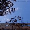 作曲工房 朝の天気 2018-02-11(日)建国記念の日  晴れ