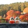 【大阪・箕面】勝ちダルマの寺『勝尾寺』の紅葉がオススメ
