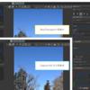 NikonのRawファイルをRawTherapeeで読み込んで、Capture NX-Dの現像結果により近づける
