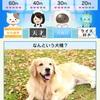 【クイズバトルオンライン】最新情報で攻略して遊びまくろう!【iOS・Android・リリース・攻略・リセマラ】新作スマホゲームが配信開始!