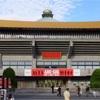ABE-GIG in 日本武道館に行ってきました!