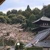 α7IIIとSAL70300Gで當麻寺の桜を