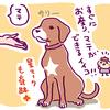 【一コマ犬マンガ日記】志村どうぶつ園を観る6