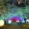 美しい石垣のある福岡城跡がインタラクティブな光のアート空間に!「チームラボ 福岡城跡 光の祭 2019-2020」