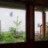GW最終日・雨の庭を眺めて