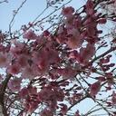 Beautiful Day〜シンプルに生きる