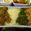 キャセイ搭乗記♪ 香港→成田 CX520&ヒンズーミールな機内食。